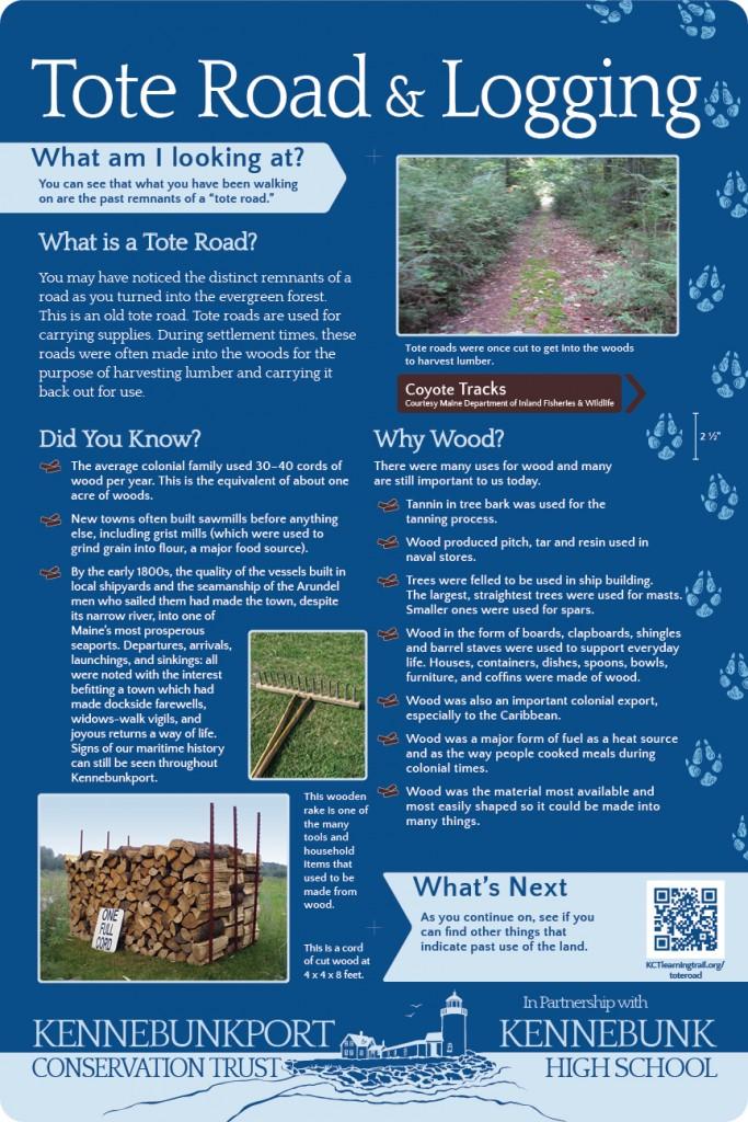 Tote Road Logging