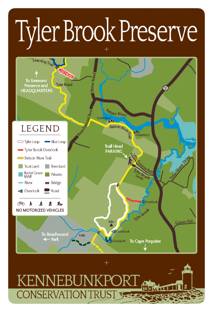 Tyler Brook Map